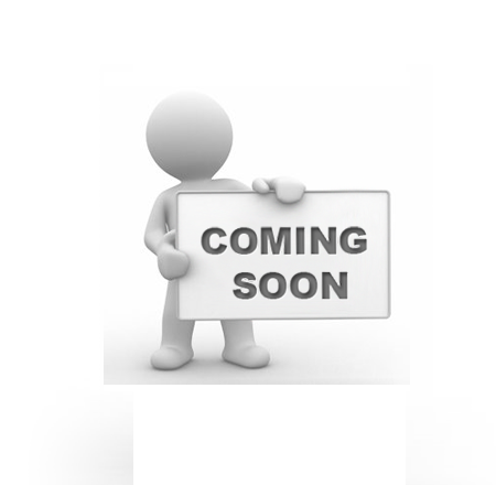 PRS - Könyv széf  szótár / könyv kinézetű fém értéktároló kazetta